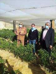 وكيل زراعة الوادي الجديد يتفقد عددا من المشروعات في مركز الداخلة