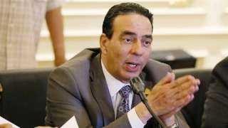 النائب أيمن أبو العلا : مصر لعبت دوراً رائداً في إطار الدبلوماسية متعددة الأطراف لحقوق الإنسان
