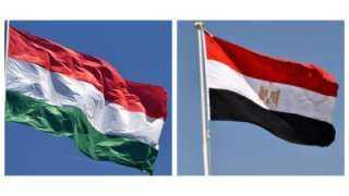 العلاقات المصرية المجرية.. تاريخ طويل وعلاقات تعاون متميزة